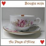 Bougie bio
